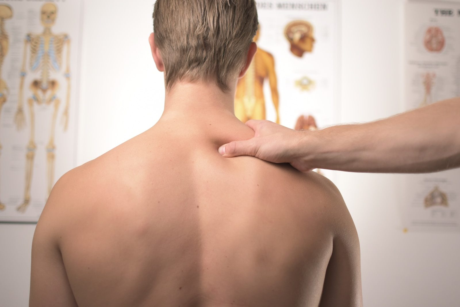 Massage therapist pinching the upper trapezius muscle of the posterior view of a muscular topless man